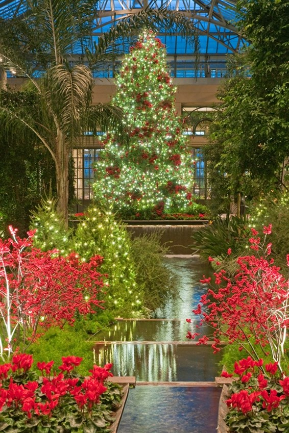Longwood Gardens Holiday Tour