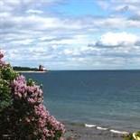 Mackinac Island Lilac Festival 2018
