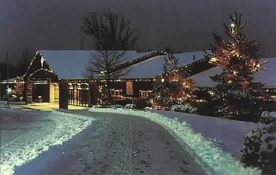 Oglebay Resort and Wheeling Lights