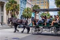 Myrtle Beach & Charleston, SC - 2021