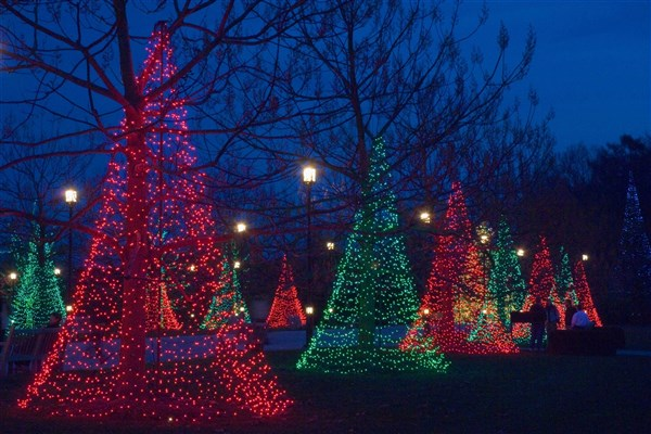 Holiday trees at Longwood Gardens